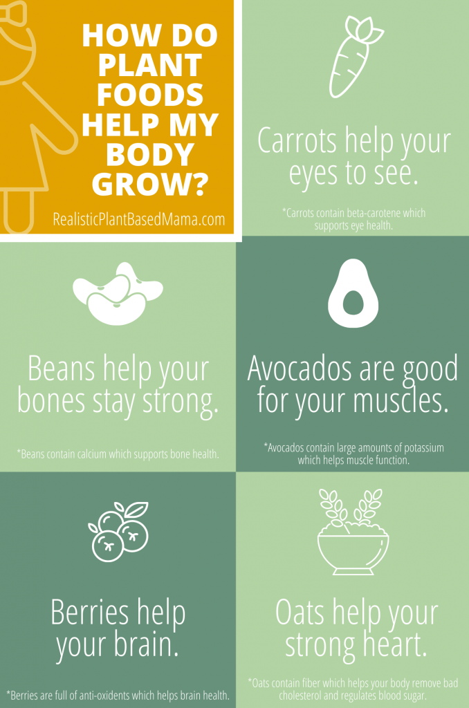 "The photo contains 6 boxes.  The top left is yellow and says ""How do plant foods help my body grow?""  The other boxes say ""Carrots help your eyes to see."" ""Beans help your bones stay strong."" ""avocados are good for your muscles."" ""Berries help your brain."" and ""Oats help your strong heart."" This chart is aimed towards preschool aged children with matching images of the food to and tips below that identify WHY each food helps in the way they do."